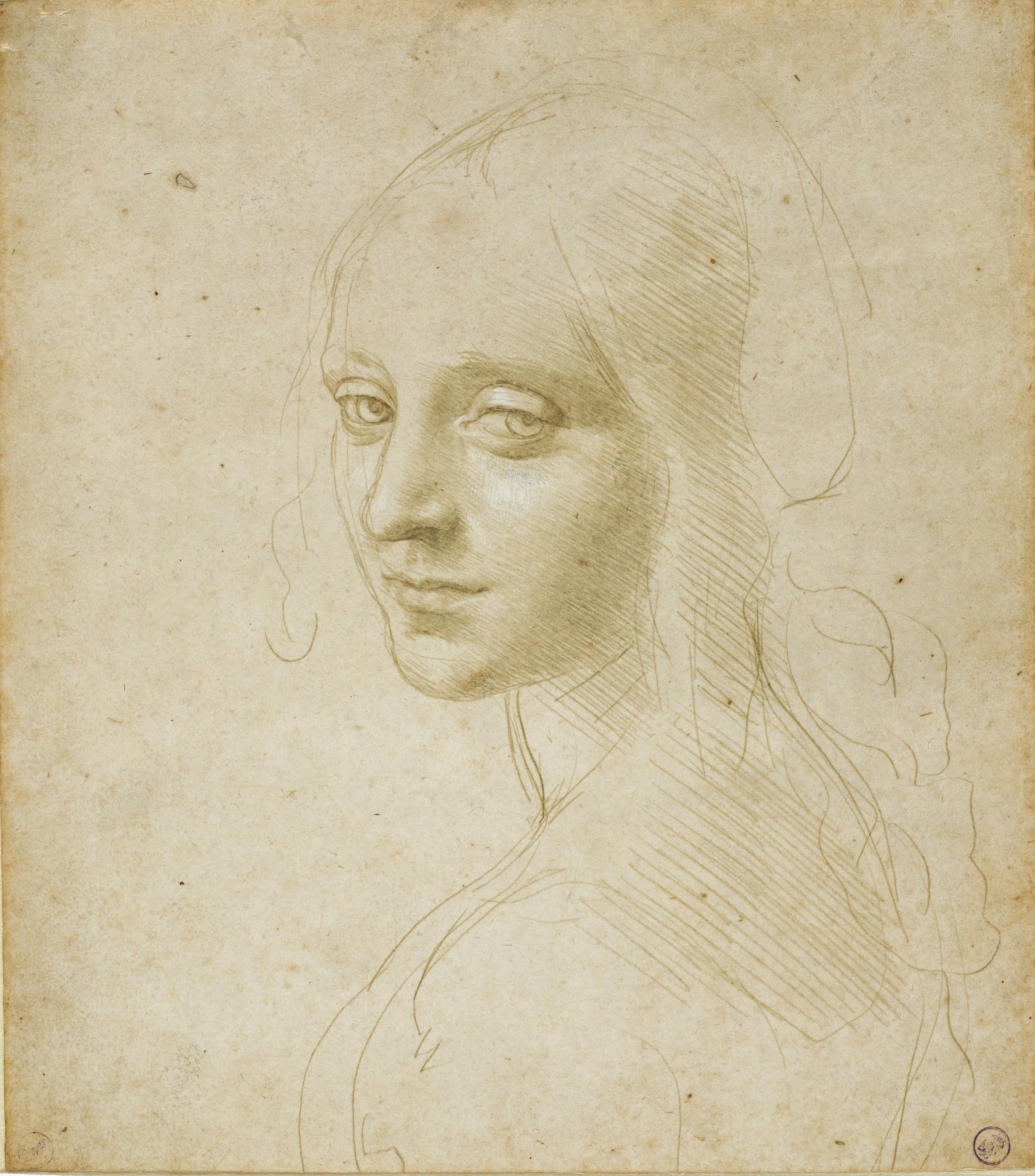 Leonardo da Vinci and the Idea of Beauty