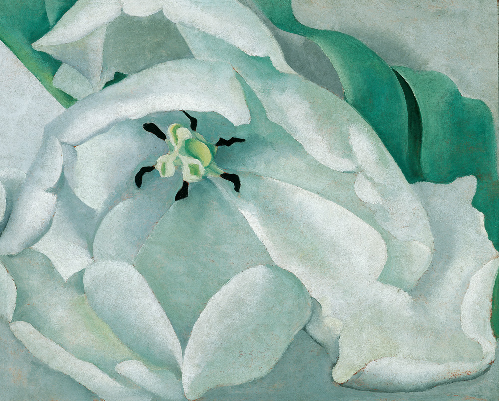 Women with vision masterworks from the permanent collection image citation georgia okeeffe american 1887 1986 white flower 1932 oil on panel muscarelle museum of art at the college of william mary mightylinksfo