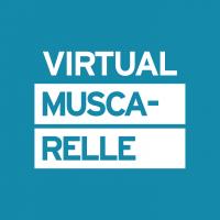 VirtualMuscarelle_onecolor_blu